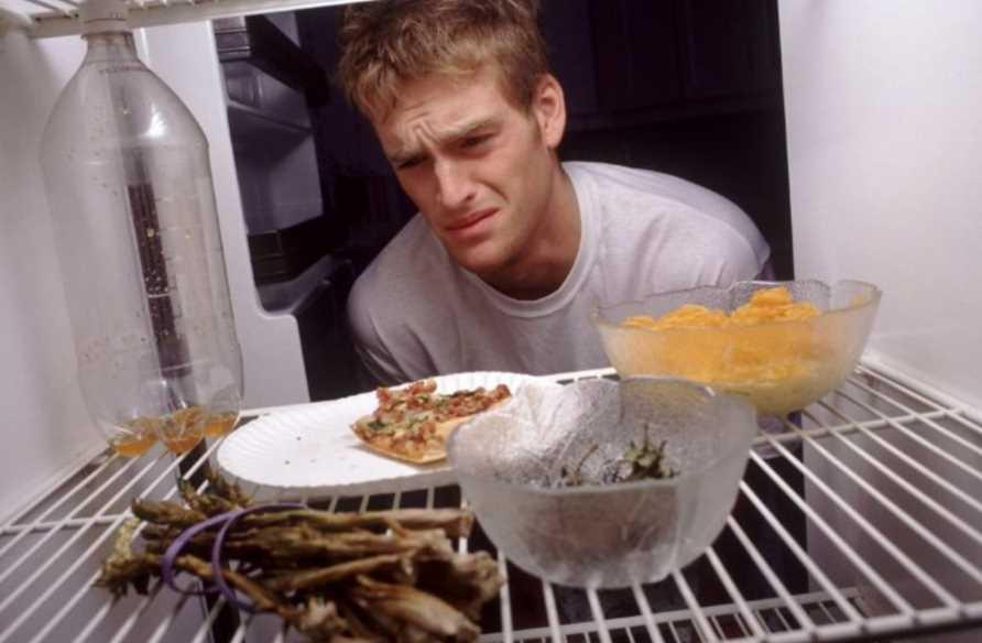 Чем и как можно убрать запах рыбы из холодильника
